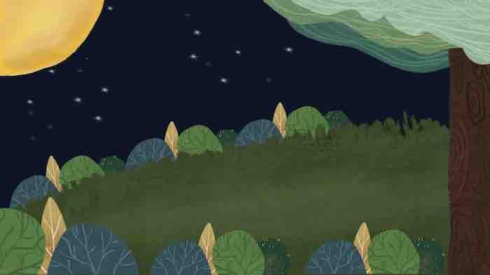 穏やかな夜の画像